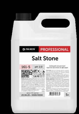 Salt Stone моющий концентрат против высолов на фасадах 5л